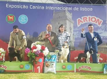 International Dog Show LIsboa